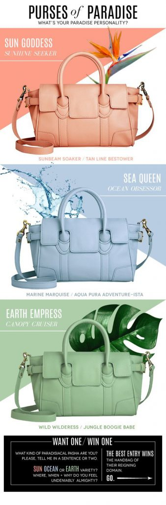 Purses of Paradise Email Design